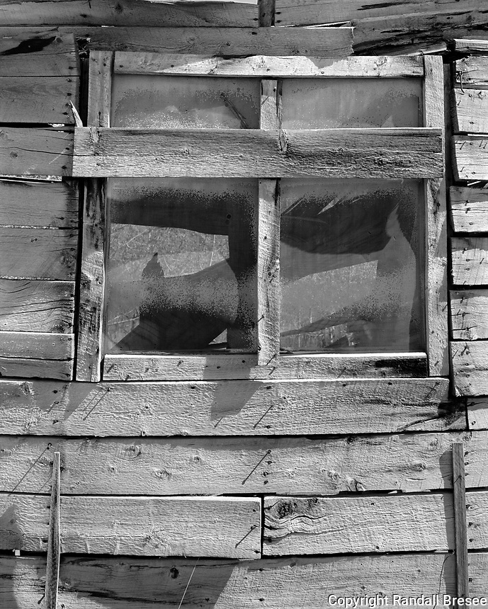 """""""Abandoned Building in Silver City"""" <br /> Yukon Territory, Canada <br /> <br /> Many interesting sights can be seen along the Alaska Highway in British Columbia, the Yukon Territory and Alaska. The ghost town of Silver City is located just off the Alaska Highway at Kluane Lake in the Yukon Territory of Canada. This black and white photo shows an abandoned building in Silver City."""