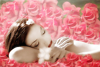 A young beautiful woman sleeping among pink roses.