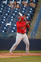 Palm Beach Cardinals catcher Jose Godoy (27) at bat during a game against the Tampa Yankees on July 25, 2017 at George M. Steinbrenner Field in Tampa, Florida.  Tampa defeated Palm beach 7-6.  (Mike Janes/Four Seam Images)