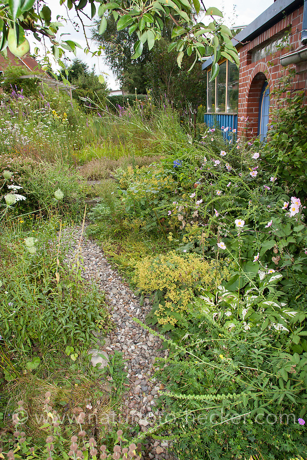 Kiesweg, Weg, Gartenweg in einem Naturgarten. gravel walk in a natural garden