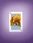 Illustrative image of card with bear print representing risk in stock market