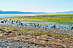 Padilla Bay at Bay View State Park, Washington.  City of Anacortes and oil refineries in background.  Padilla Bay Reserve, Padilla Bay National Estuarine Research Reserve, padilla Bay Interpretive Center, and Padilla Bay Trail all nearby the city of Mt. Vernon, Washington