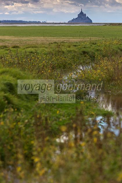 Europe/France/Basse-Normandie/50/Manche/Baie du Mont-Saint-Michel/ Le Val-Saint-Père:   Pré Salés au  Gué de l'Épine  //  France, Manche, Bay of Mont Saint Michel, Bas-Courtils:  tidal marsh meadows