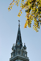 Canada, Montreal, Église Sainte Brigide, church steeple with tree