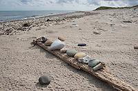 Naturkunst am Strand, schöne Steine, Herzsteine, Herz, Herzform liegen auf einem angeschwemmten Holzstück, Strandkunst, Strandgut, Strand, Meer, Küste