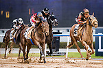DUBAI, UNITED ARAB EMIRATES - MARCH 25: Second Sumer #5 ridden by Patrick Dobbs (red/black hat), wins the Godolphin Mile at Meydan Racecourse during Dubai World Cup Day on March 25, 2017 in Dubai, United Arab Emirates. (Photo by Douglas DeFelice/Eclipse Sportswire/Getty Images)