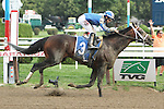 August 17, 2014:  Farhaan with Irad Ortiz, Jr. win the 2nd running of the Alydar Stakes for 4-year olds, going 1 1/8 mile at Saratoga Racetrack. Trainer: Kiaran McLaughlin. Owner: Shadwell Stable. Sue Kawczynski/ESW/CSM