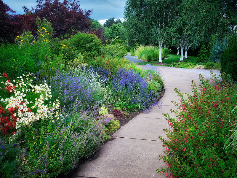 Pathway in Oregon Garden. Silverton, Oregon