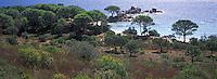 Europe/France/Corse/2A/Corse-du-Sud/Env. de Porto-Vecchio: La plage de Palombaggia