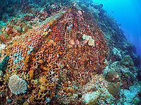 seascape with the abandoned fish net on coral reef, an environmental issue, Raja Ampat, Irian Jaya, Indonesia,