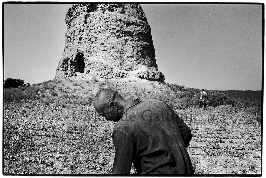 Uzbekistan - An old farmer working in a potato field, behind him the Zurmala Tower, once a library