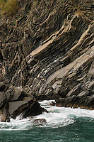 - stratified reef in Vernazza (Cinque Terre) ..- scogli stratificati a  Vernazza (Cinque Terre)