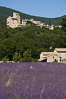 Europe/France/Rhône-Alpes/26/Drôme/Le Poët-Laval: Le Village perché et un champ de lavande