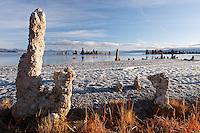 Tufta rock formations at edge of Mono Lake, South Tufta, eastern Sierras, Mono Basin National Forest Scenic Area, near Lee Vining, California, USA