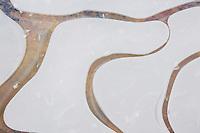 Ice patterns, Haw River State Park, Pittsboro, North Carolina, USA