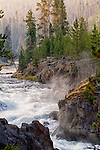 Steam rises from the Firehole River in Yellowstone National Park.