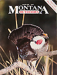 Nelson Kenter photo of a Blue Grouse in mating display used on a magazine cover