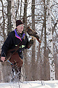 00432-030.05 Falconry: Falconer with red-tailed hawk on his fist is in heavy cover while hawking during winter.