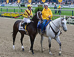 Calvin Borel and Rachel Alexandra in the post parade for The Preakness Stakes.