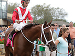 Suzzona, ridden by Julien Pimentel, wins the Turf Amazon Handicap at  Parx Racing in Bensalem, PA, on September 5, 2011.  (Joan Fairman Kanes/Eclipsesportswire)