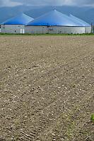 ROMANIA Transilvania, Ucea de Jos, Biogas plant of meat processing plant CarmOlimp / RUMAENIEN Siebenbuergen, Ucea de Jos bei Sibiu, Biogas Nord Biogasanlage des Schlachtbetriebes CarmOlimp, hier werden Schlachtabfaelle vergoren