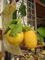 Limones, Amalfi