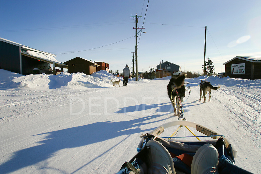 Riding on a dog sled in the Arctic, down the frozen streets of Old Crow, Yukon, Canada.