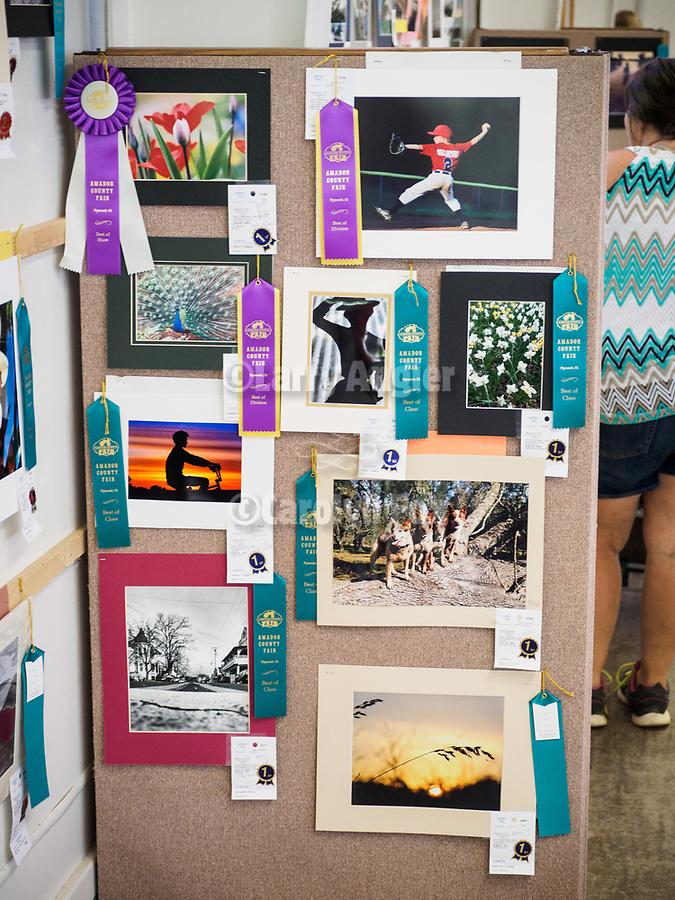 Top prizes in Youth Photography at the 79th Amador County Fair, Plymouth, Calif.<br /> <br /> <br /> #AmadorCountyFair, #PlymouthCalifornia,<br /> #TourAmador, #VisitAmador,