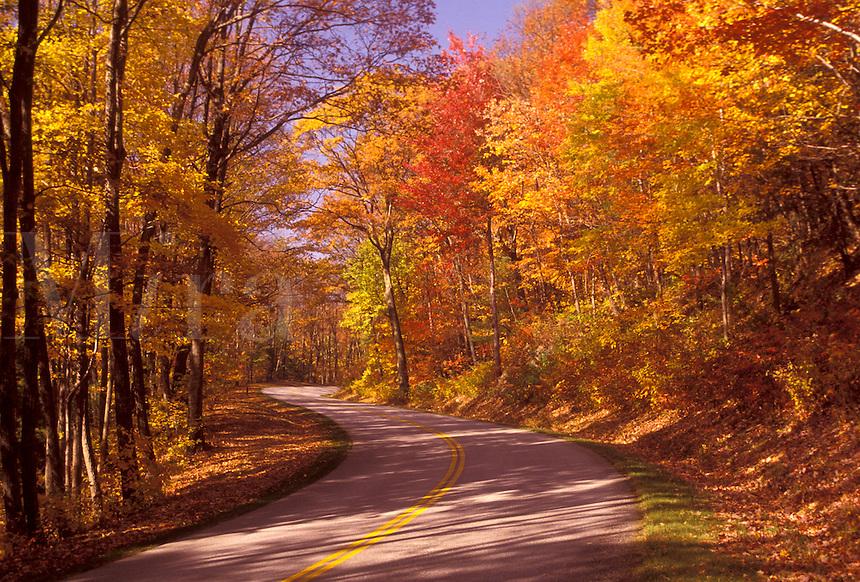 AJ3139, Blue Ridge Parkway, Blue Ridge, autumn, road, Virginia, Blue Ridge Mountains, Appalachian Mountains, The scenic Blue Ridge Parkway in the fall through the Jefferson National Forest in the state of Virginia.
