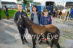 At the Castlemaine Fair in memory of the late John O'Donoghue and as a fundraiser for the Kerry Hospice on Sunday l to r: Daniel Hartigan (Limerick) with Molly the horse and Anna Maciaszak (Killarney) with Casper the horse.