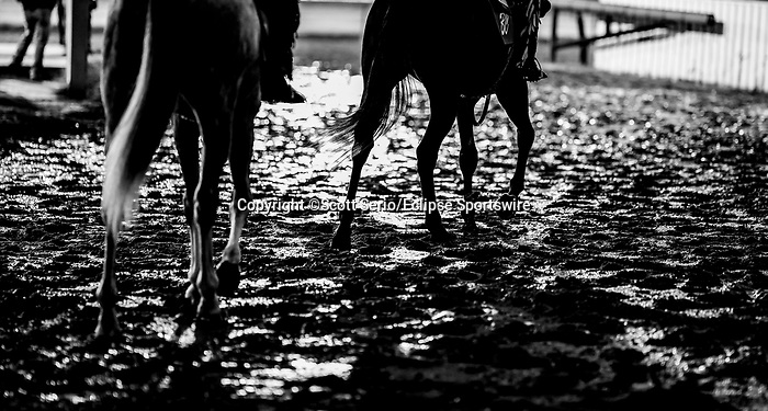 April 25, 2021: Scenes from the backside as horses prepare for the Kentucky Derby at Churchill Downs on April 25, 2021 in Louisville, Kentucky. Scott Serio/Eclipse Sportswire/CSM