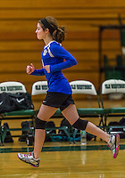 1 November 2015: Yeshiva University Maccabee Outside Hitter, Setter, and team co-Captain Shana Wolfstein, a Senior from Burlington, VT, is introduced prior to facing the Old Westbury Panthers at SUNY Old Westbury in Old Westbury, NY. The Panthers edged out the Maccabees 3-2 in NCAA women's volleyball, Skyline Division play. Mandatory Credit: Ed Wolfstein Photo *** RAW (NEF) Image File Available ***