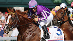 April 12, 2014:  Pablo Del Monte during the Blue Grass Stakes at Keeneland racecourse.  Candice Chavez/ESW/CSM