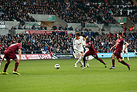 Saturday 2nd March 2013<br /> Pictured: (L-R) Michu, Cheick Tiote.<br /> Re: Barclays Premier Leaguel, Swansea  v Newcastle at the Liberty Stadium in Swansea.