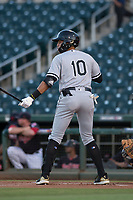 AZL White Sox shortstop Lency Delgado (10) at bat during an Arizona League game against the AZL Indians 1 at Goodyear Ballpark on June 20, 2018 in Goodyear, Arizona. AZL Indians 1 defeated AZL White Sox 8-7. (Zachary Lucy/Four Seam Images)