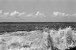 Father and son fishing off rocks Bondi beach headland, Sydney Australia. 2000