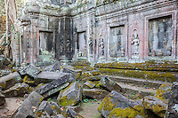 Cambodia.  Ta Prohm Temple Ruins, 12th-13th. Century.  Devatas (Deities) among the Ruins of an Interior Courtyard.