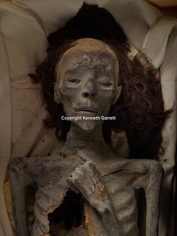 mm7864; 18th Dynasty; New Kingdom; Egypt; The Egyptian Museum; Cairo; Mummy, Queen Tiye, Tut Grandmother, Tut DNA
