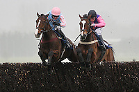 Race winner Niceonefrankie ridden by Aidan Coleman (L) jumps the last alongside Lord Singer ridden by Jamie Moore in the Physicool Handicap Chase (In Aid of West Berkshire Mencap) - Horse Racing at Newbury Racecourse, Berkshire - 02/03/12 - MANDATORY CREDIT: Gavin Ellis/TGSPHOTO - Self billing applies where appropriate - 0845 094 6026 - contact@tgsphoto.co.uk - NO UNPAID USE.