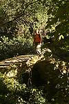 pont sur le sentier reliant Monterosso et Vernazza. Parc national des Cinque Terre. Ligurie. Italie.