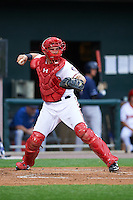 Harrisburg Senators catcher Spencer Kieboom (20) during a game against the New Hampshire Fisher Cats on June 2, 2016 at FNB Field in Harrisburg, Pennsylvania.  New Hampshire defeated Harrisburg 2-1.  (Mike Janes/Four Seam Images)