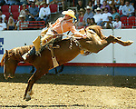 Kaycee Field scores an 86 point bareback ride on the Beutler & Son Rodeo Company bronc South Point to win short go action at the Greeley Independence Stampede Rodeo on July 4, 2008 in Greeley, Colorado.