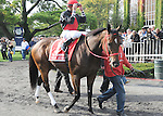 Sean Avery, ridden by Joe Bravo, runs in the Vosburgh Invitational Stakes (GI) at Belmont Park in Elmont, New York on September 29, 2012.(Bob Mayberger/Eclipse Sportswire)