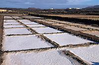 Los Cocoteros, Saline zur Meersalzgewinnung in Janubio, Lanzarote, kanarische Inseln, Spanien