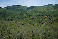 peloton ascends the first (not even official) 'climb' of the 2015 Giro: the Testico<br /> <br /> stage 2: Albenga - Genova (177km)