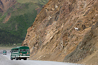 Visitors in a tour bus view Dall sheep on rocky slopes near the Toklat river in Denali National Park, Interior, Alaska.