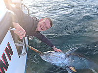 BNPS.co.uk (01202) 558833 <br /> Pic: Angling&Anxiety/BNPS<br /> <br /> PICTURED: Kevin Finch, caught a bluefin tuna while fishing off Falmouth in Cornwall <br /> <br /> Big game fishing is to return tothe UK for the first time in70 years thanks to theresurgence of giant bluefin tuna off the south west coast.<br /> <br /> The government has listened to calls from the angling community and agreed torelax thelaws on catchingthe endangered fish.<br /> <br /> Bluefin tuna, whichcan grow to 700lbs and sell for £1m in Asian markets, have made a stunning return to British waters in recent years.<br /> Their recovery is thought to be linked to an increase in sardines and sprats which they feed on.