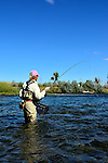 Bighorn River  Fort Smith Montana, Fly fishing image