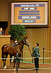 September 16, 2015: Hip 588, War Front, Satan's Quick Chick consigned by Denali Stud. Candice Chavez/ESW/CSM