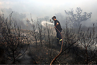 Pictured: A fireman battle with the flames in Varnavas, near Kalamos.<br /> Re: A forest fire has been raging in the area of Kalamos, 20 miles east of Athens in Greece. There have been power cuts, country houses burned and children camps evacuated from the area.